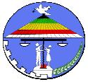 udj-usa-logo
